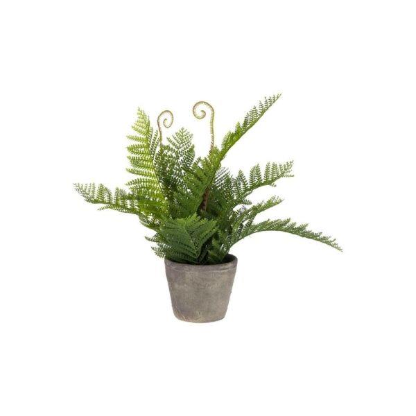 Dekoratyvinė gėlė PAPARTIS 35x40x40h žalias